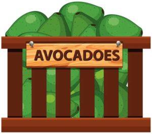 Avocado Recall
